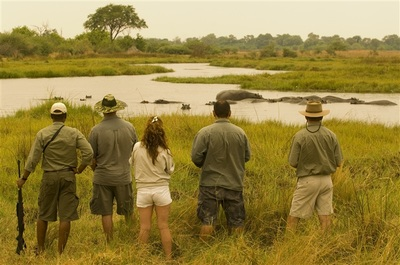 Game walk at Khwai Tented Camp, Botswana