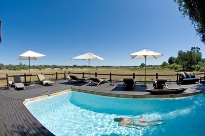 Swimming Pool at Chief's Camp, Okavango